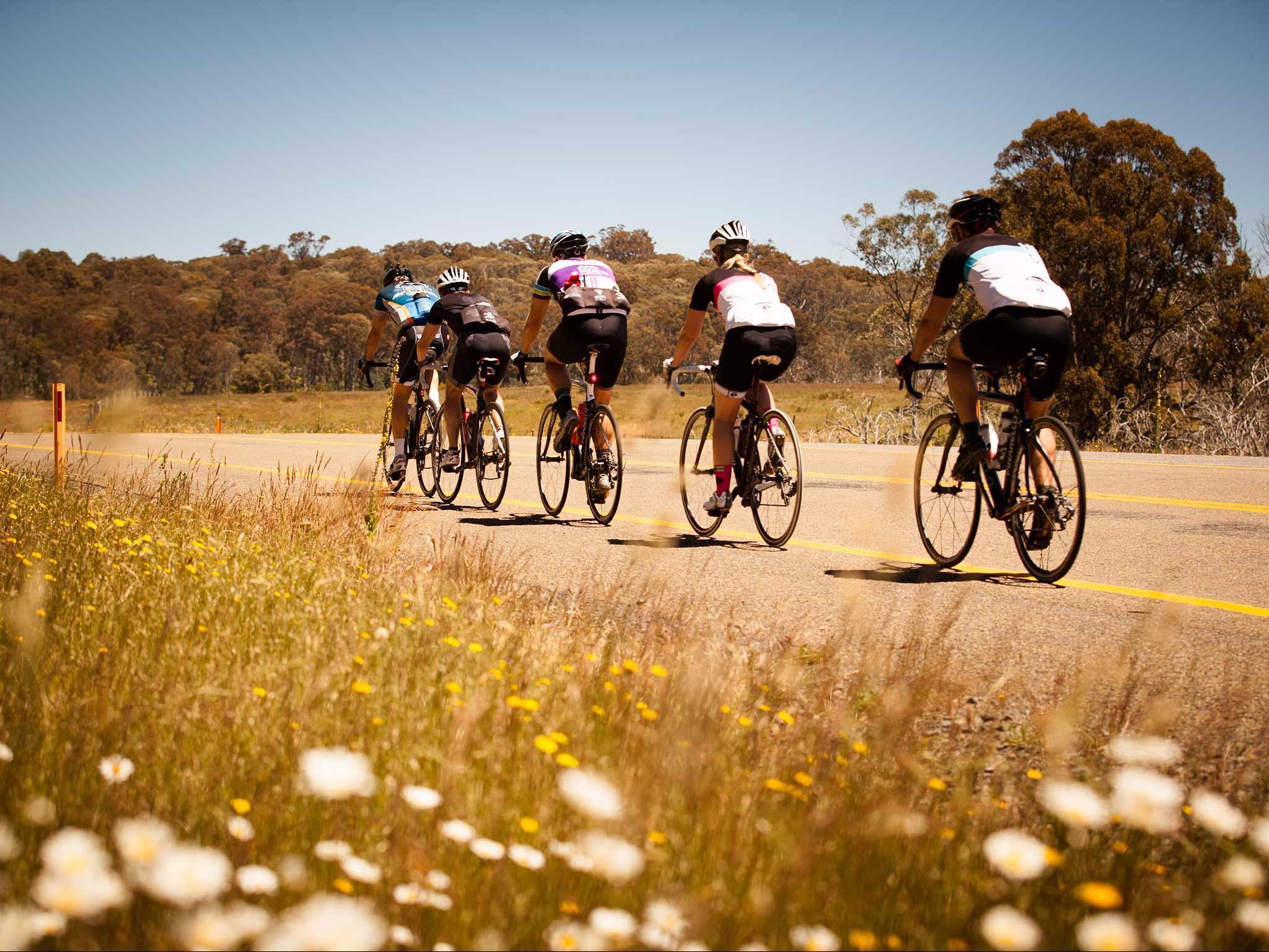 7 Peaks Ride - Dinner Plain - VIC Tourism
