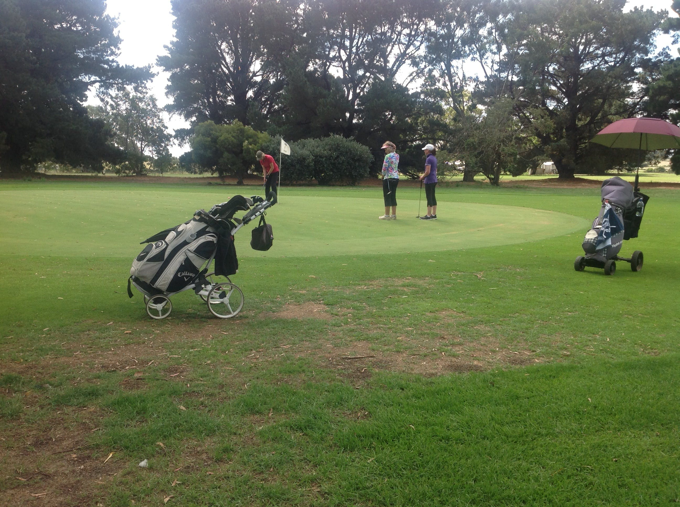 Mortlake Golf Club - VIC Tourism