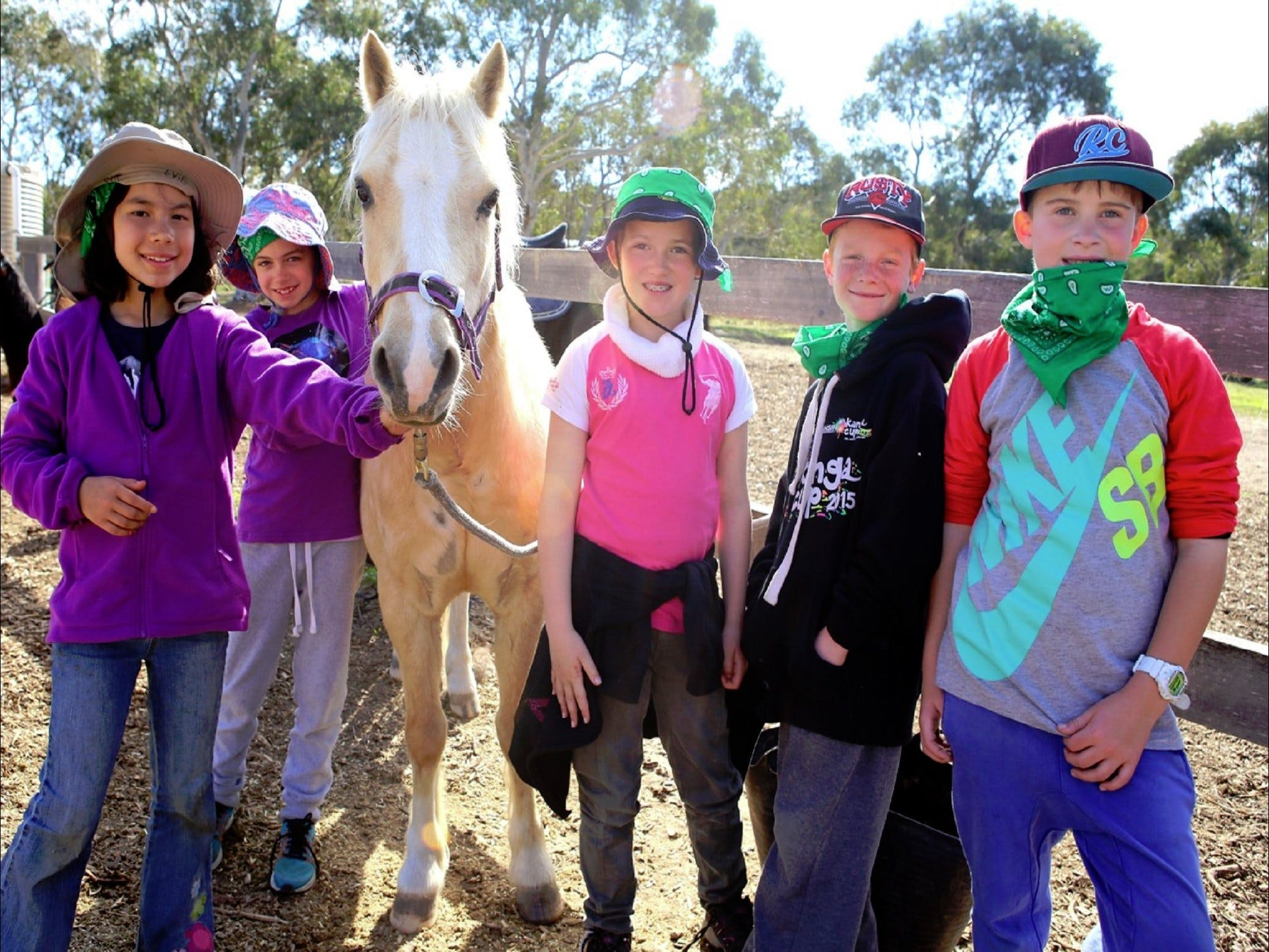 The Saddle Camp - VIC Tourism