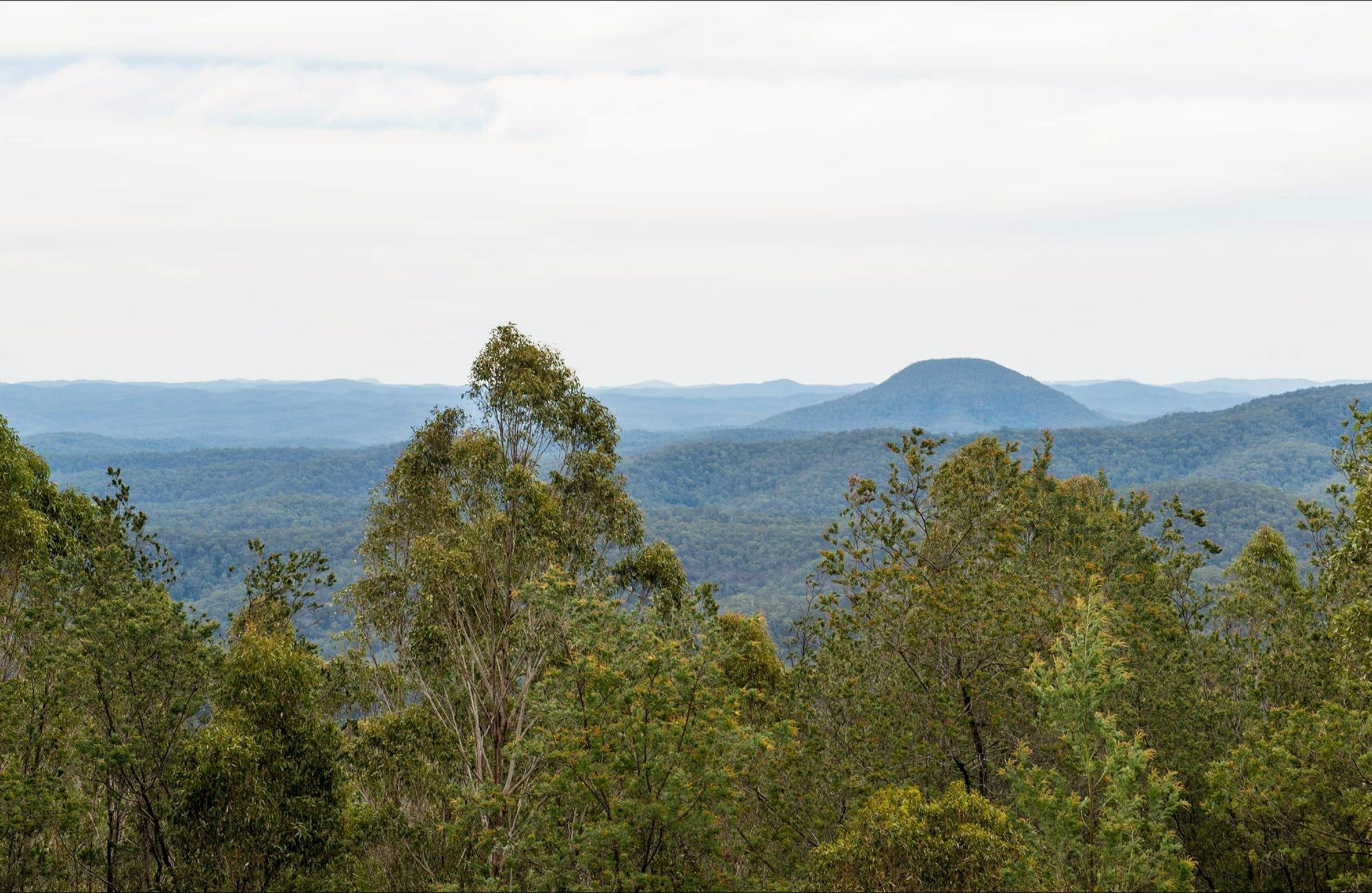 Mount Yengo lookout - VIC Tourism