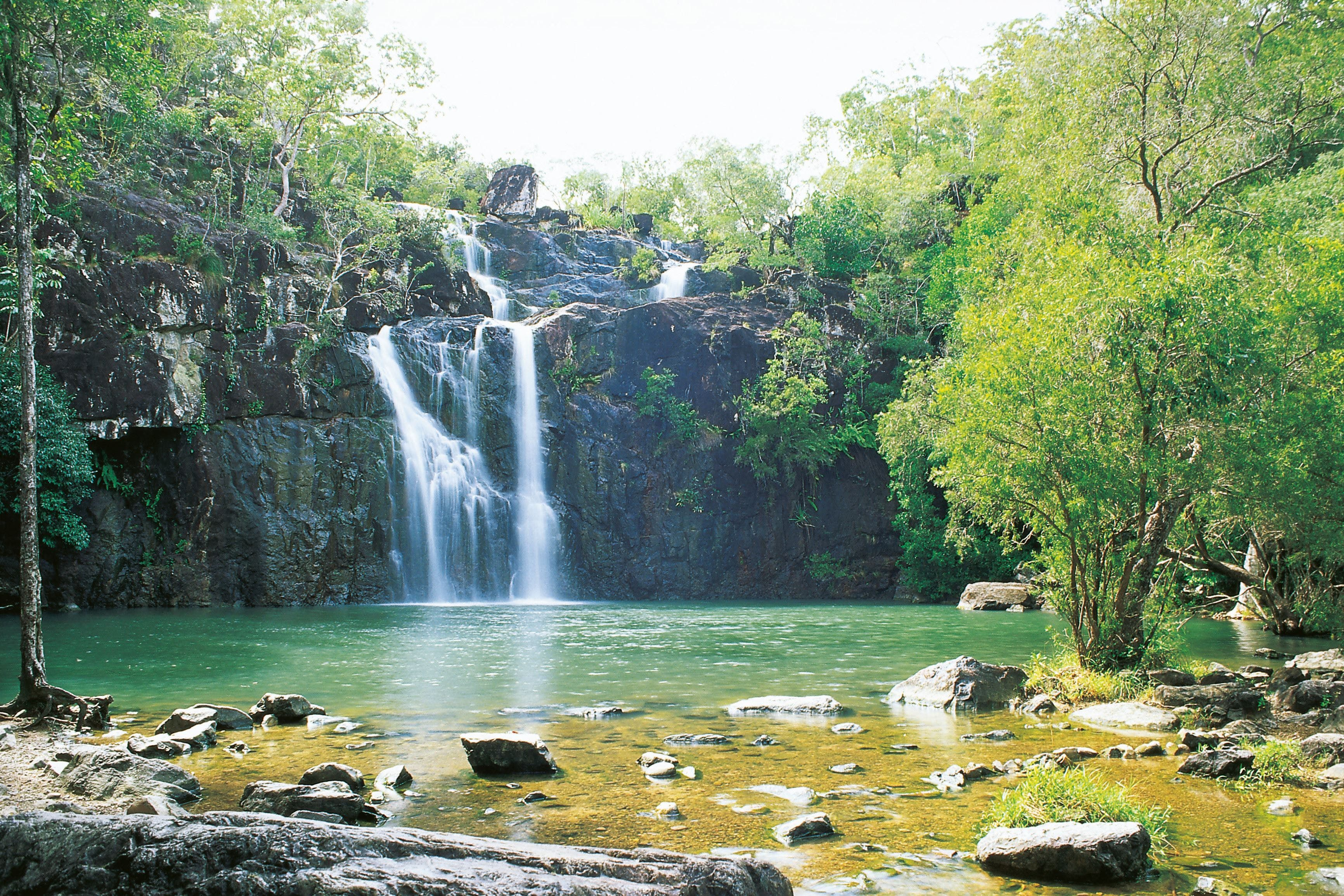 Cedar Creek Falls - VIC Tourism