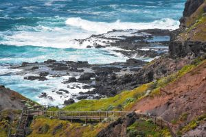 Mornington Peninsula National Park - VIC Tourism
