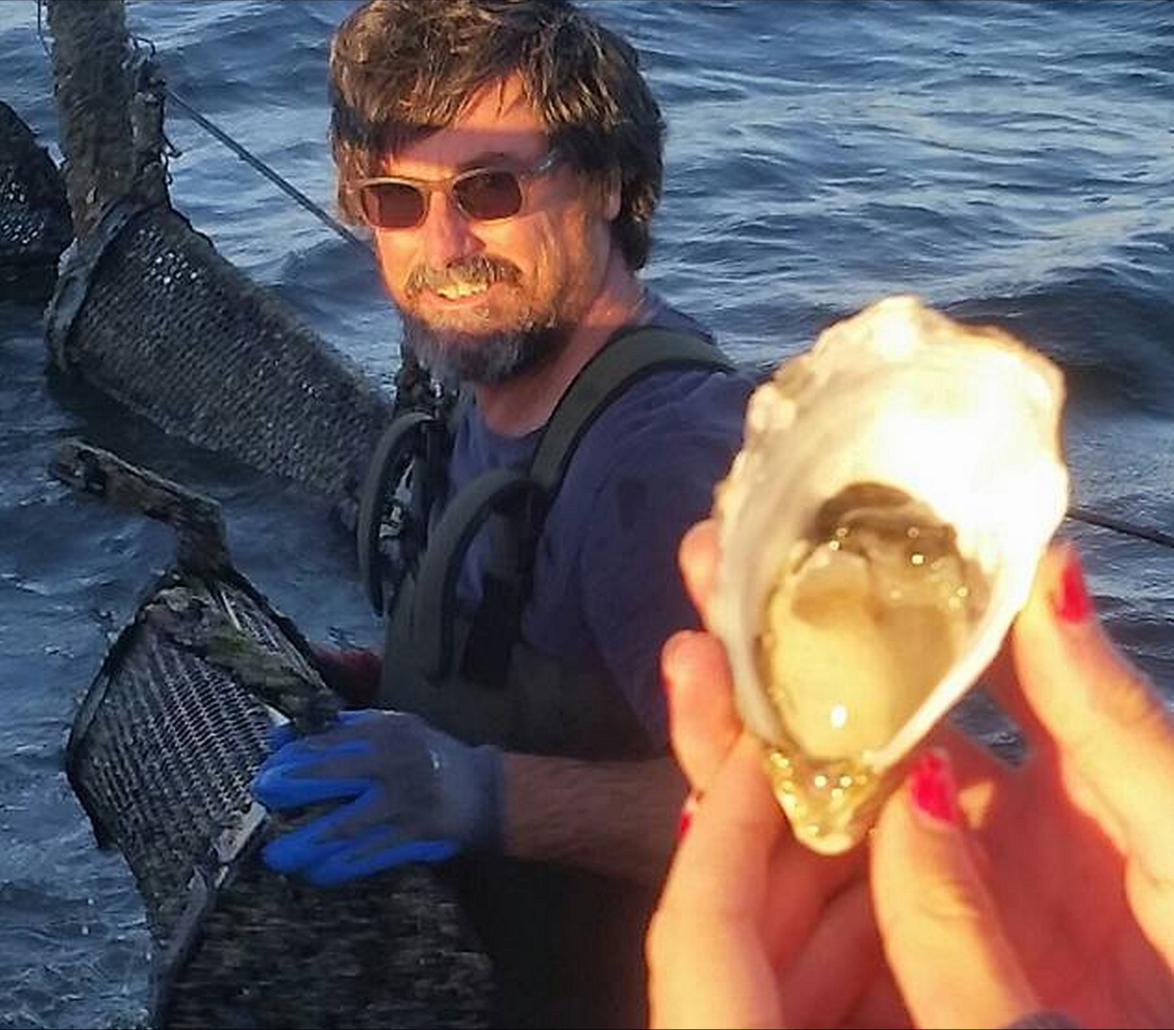Southern Yorke Oysters - VIC Tourism