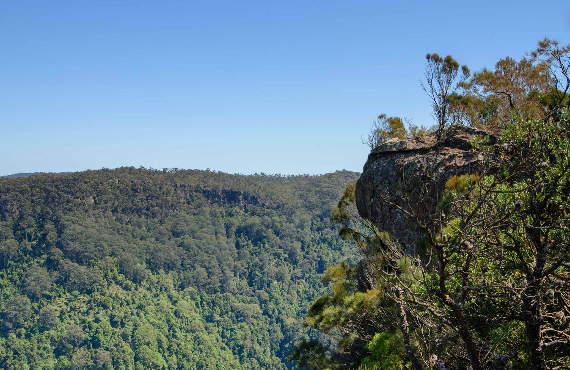 Cooks Nose Walking Track - VIC Tourism