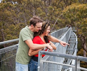 Valley of the Giants Tree Top Walk - VIC Tourism