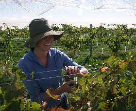 Kingsdale Wines - VIC Tourism