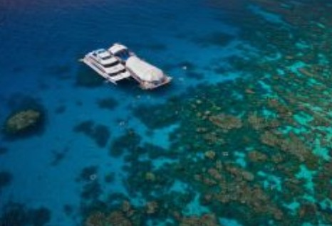 Great Adventures Reef and Green Island Cruises - VIC Tourism