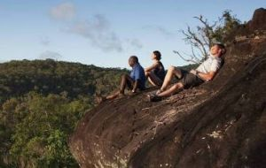 Cooktown Aboriginal Art Tours - VIC Tourism