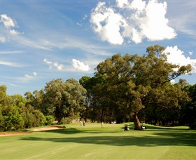 Corowa Golf Club - VIC Tourism
