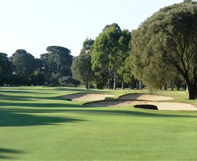 Rosebud Country Club - VIC Tourism