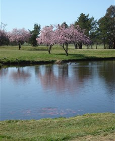 RMC Golf Club - VIC Tourism