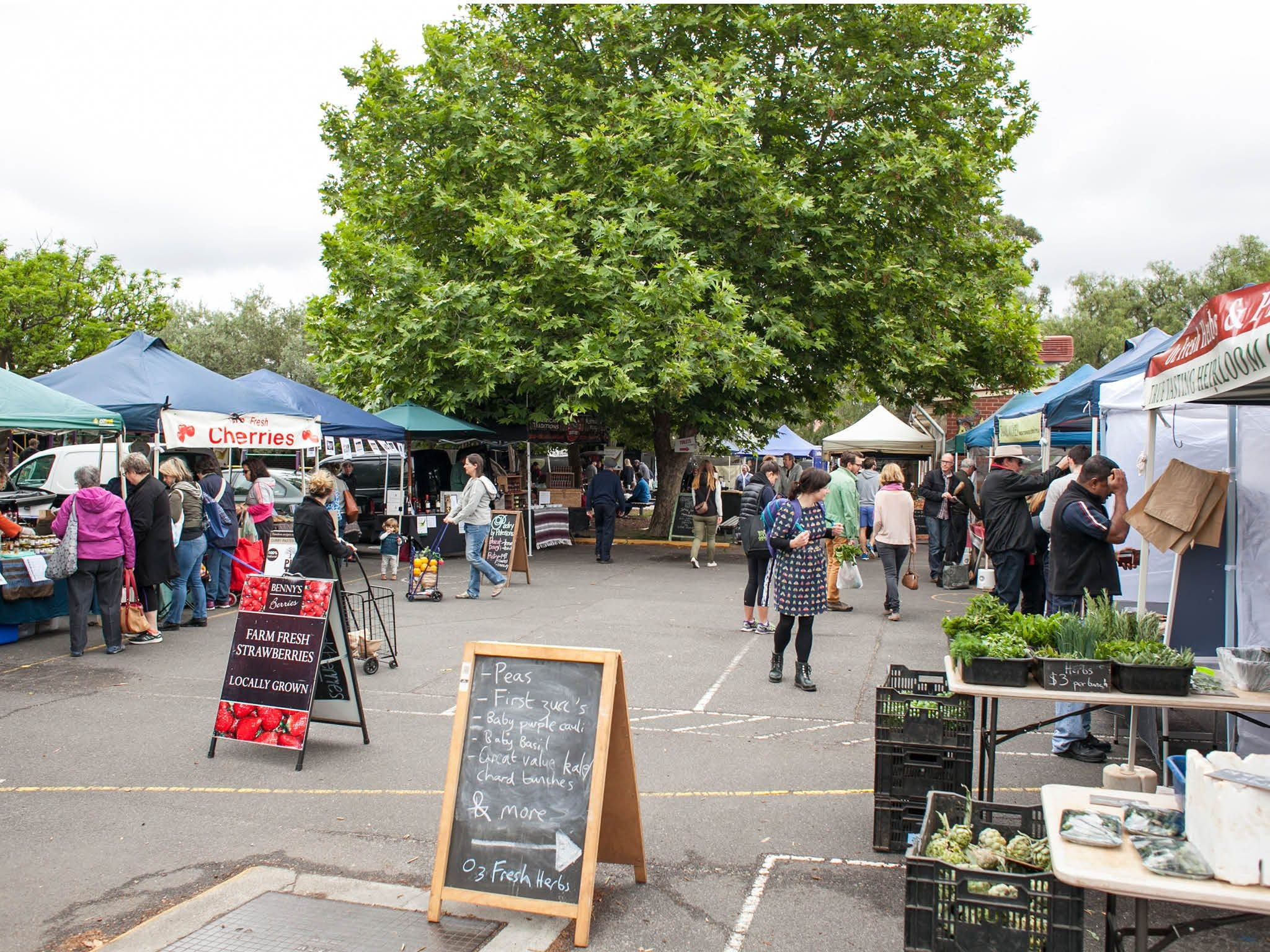 Alphington Farmers' Market - VIC Tourism
