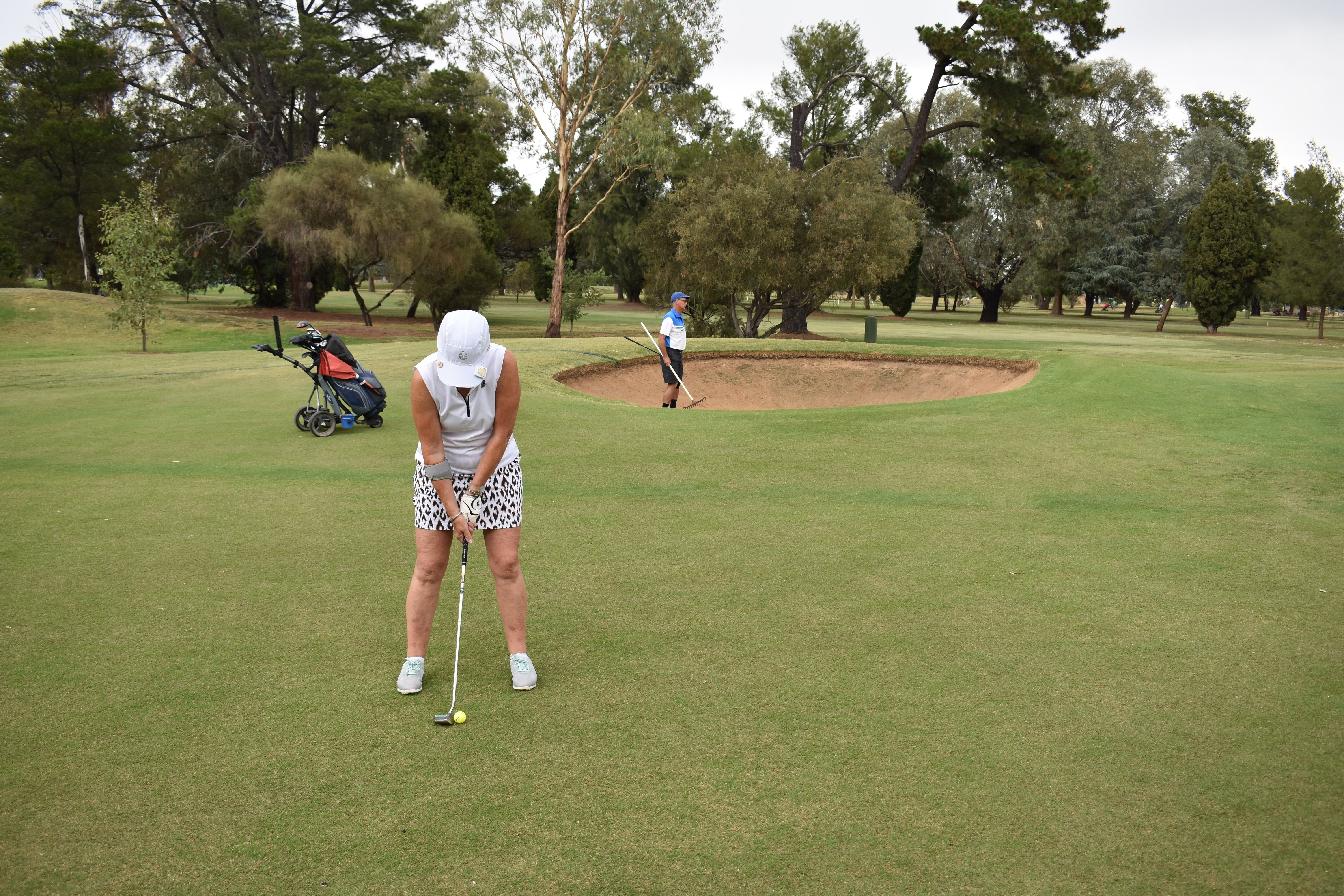 Howlong Golden Shoe Nine Hole Golf Tournament - VIC Tourism