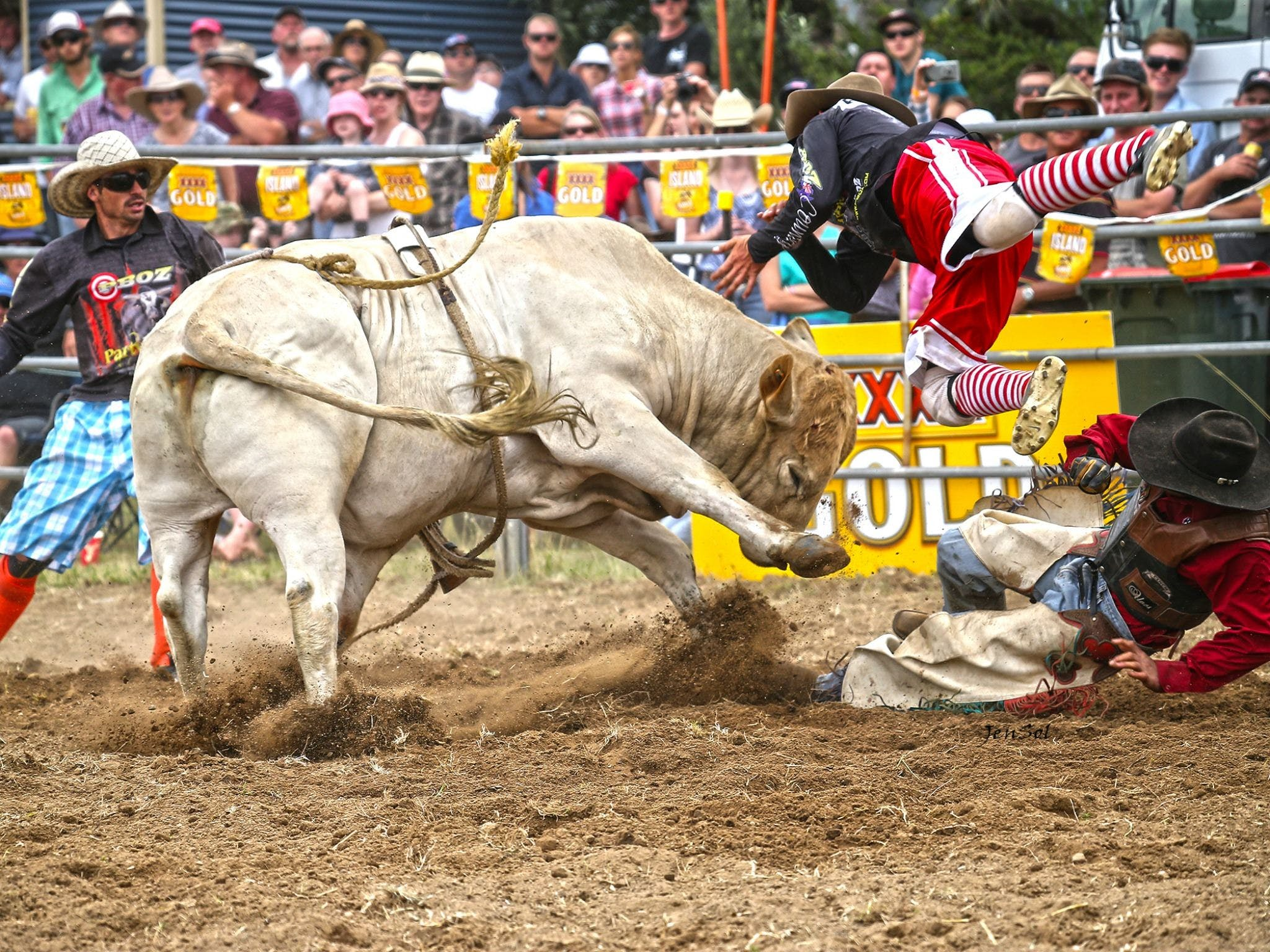 Jindabyne's Man From Snowy River Rodeo - VIC Tourism