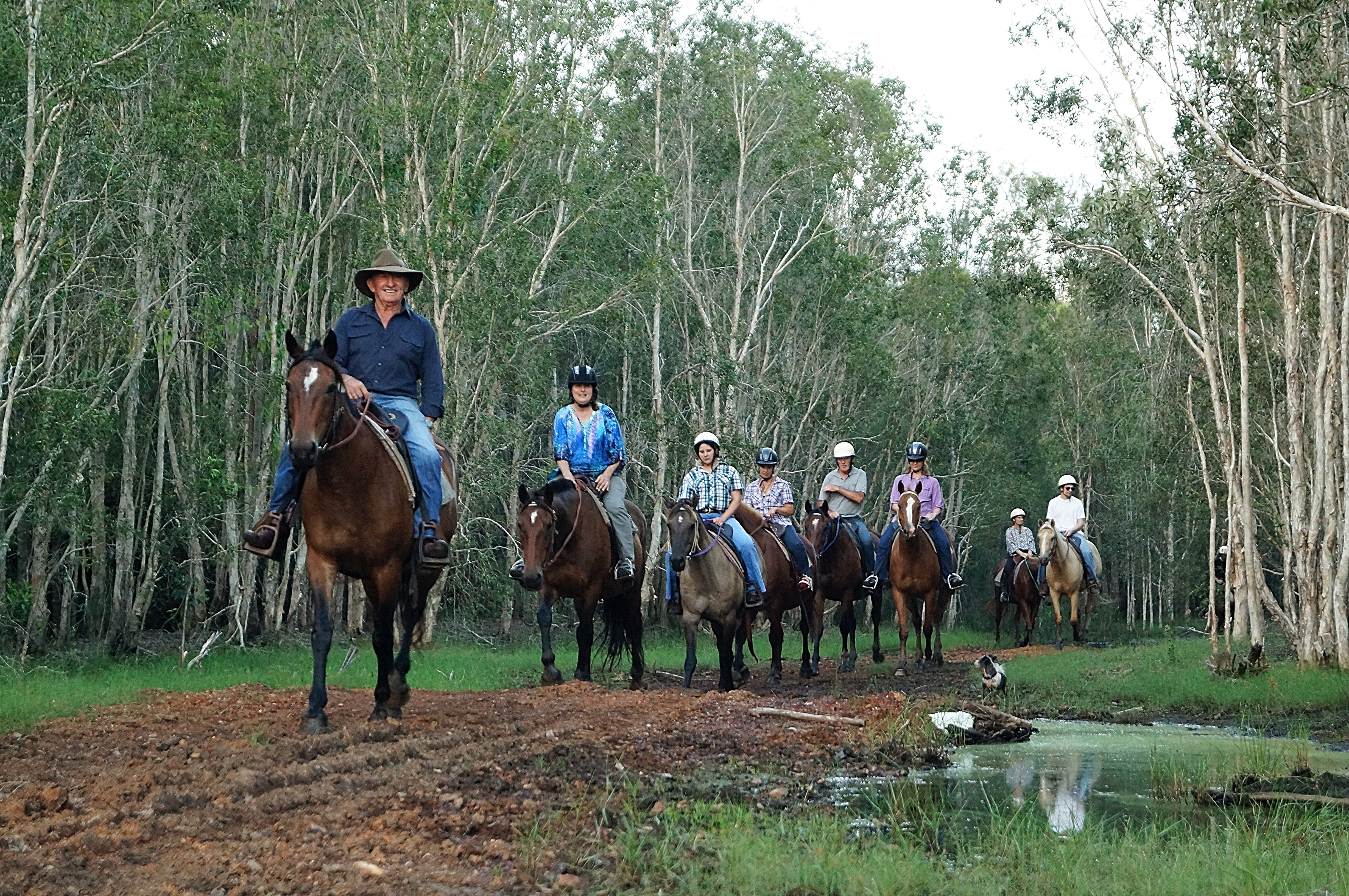 Night Horse Ride and Dinner - VIC Tourism
