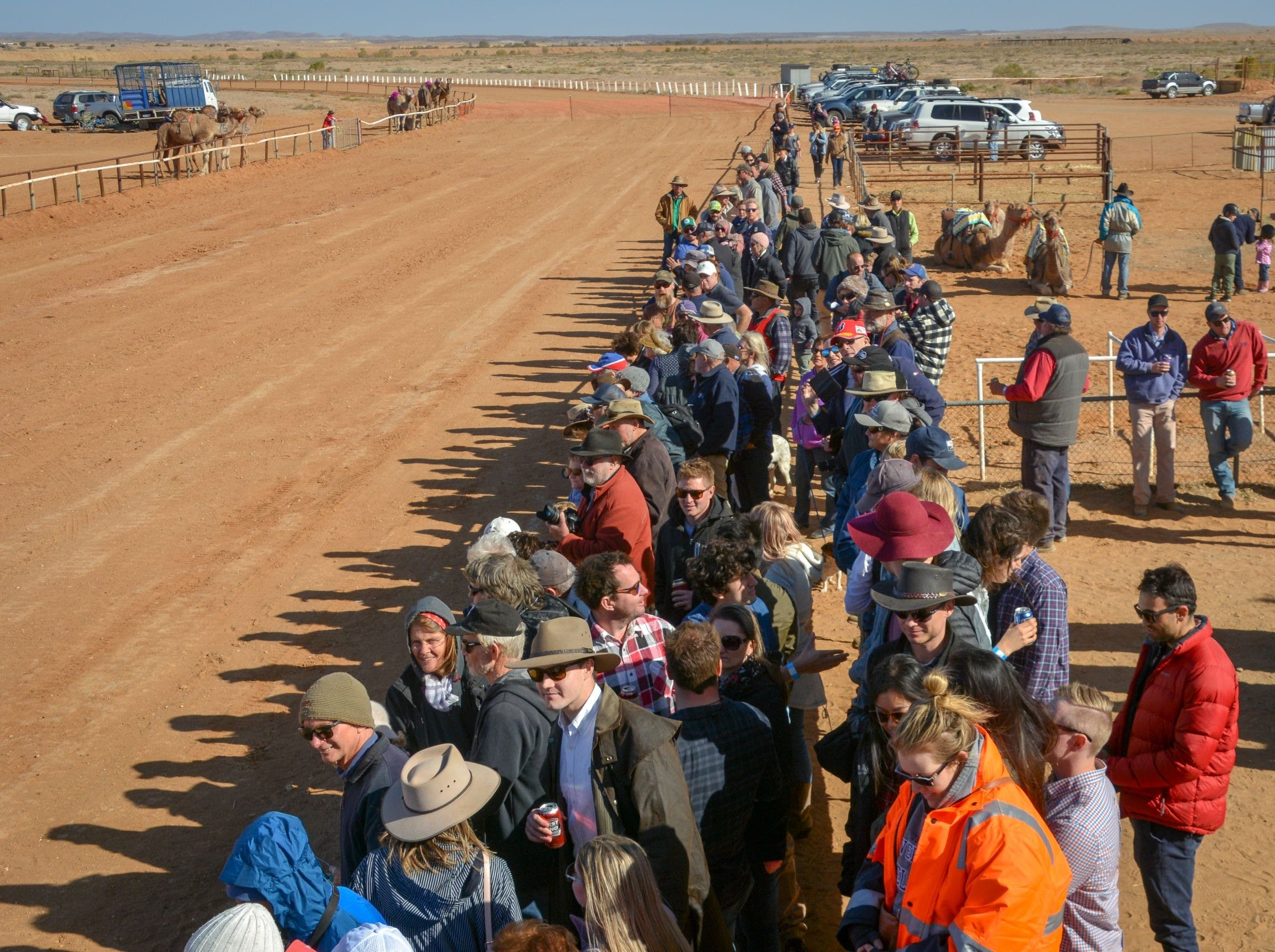 28th Marree Australasian CAMEL CUP 3 July 2021 - VIC Tourism