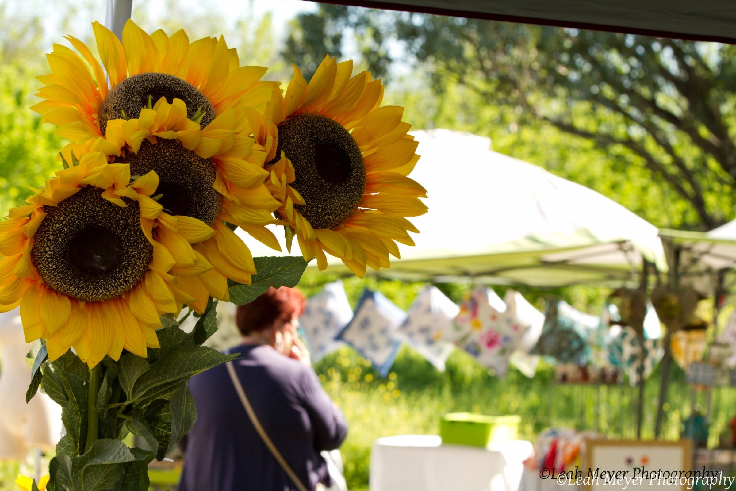 Blackville Arts and Market Day - VIC Tourism