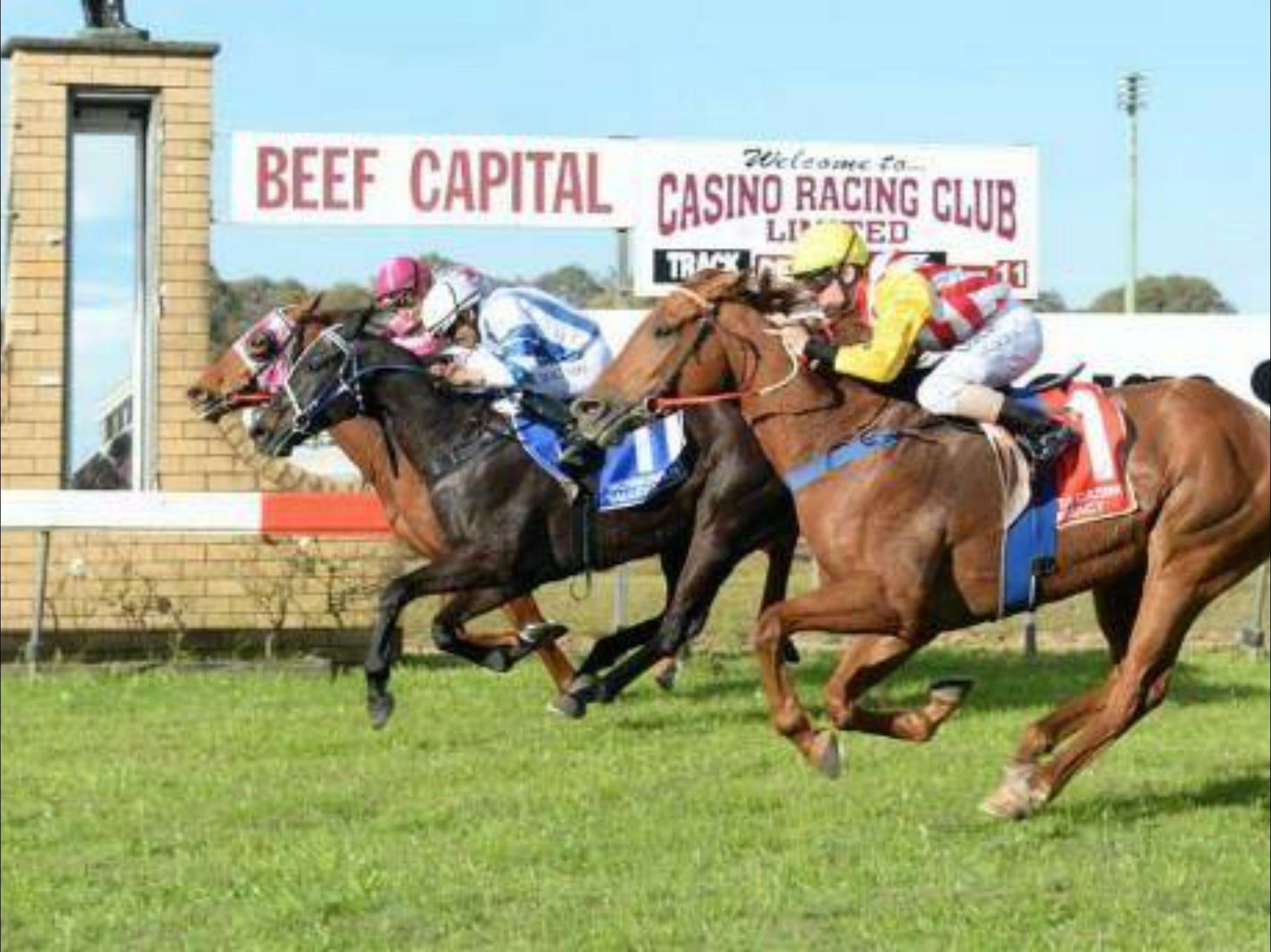 Casino Cup - VIC Tourism