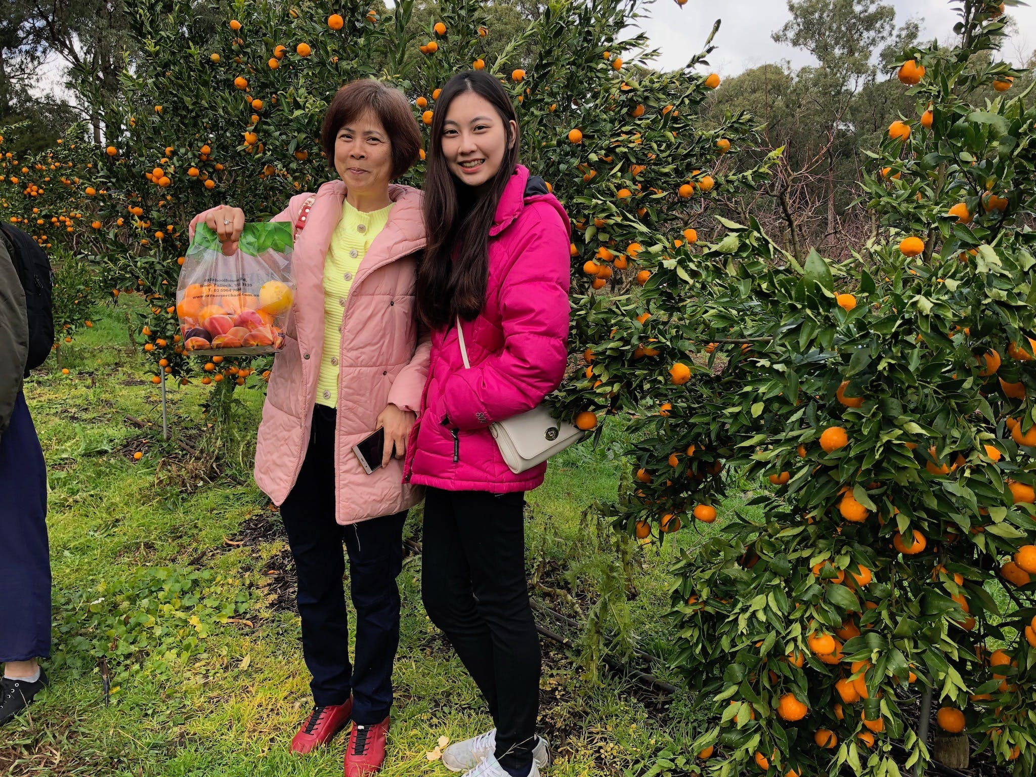 Fruit Taste Adventure Tours - VIC Tourism