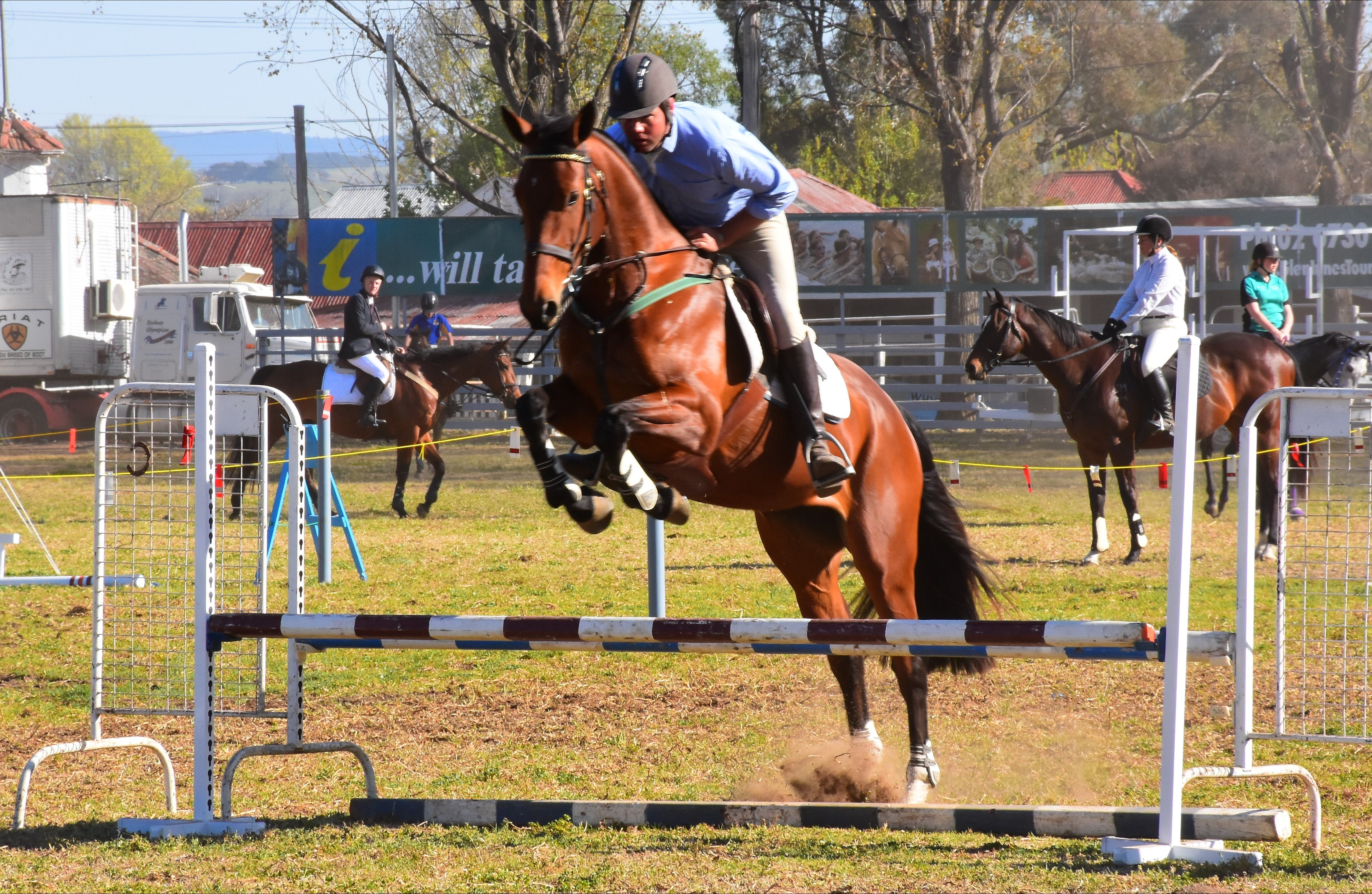 Glen Innes Pastoral and Agricultural Show - VIC Tourism