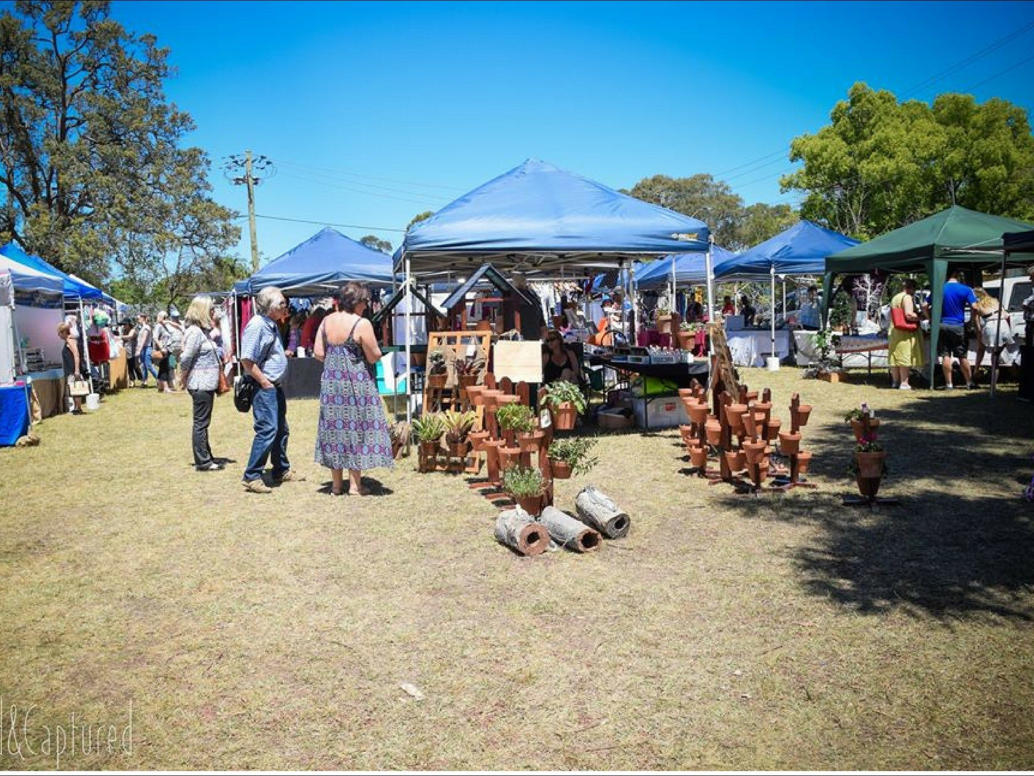 Luddenham Country Market - VIC Tourism