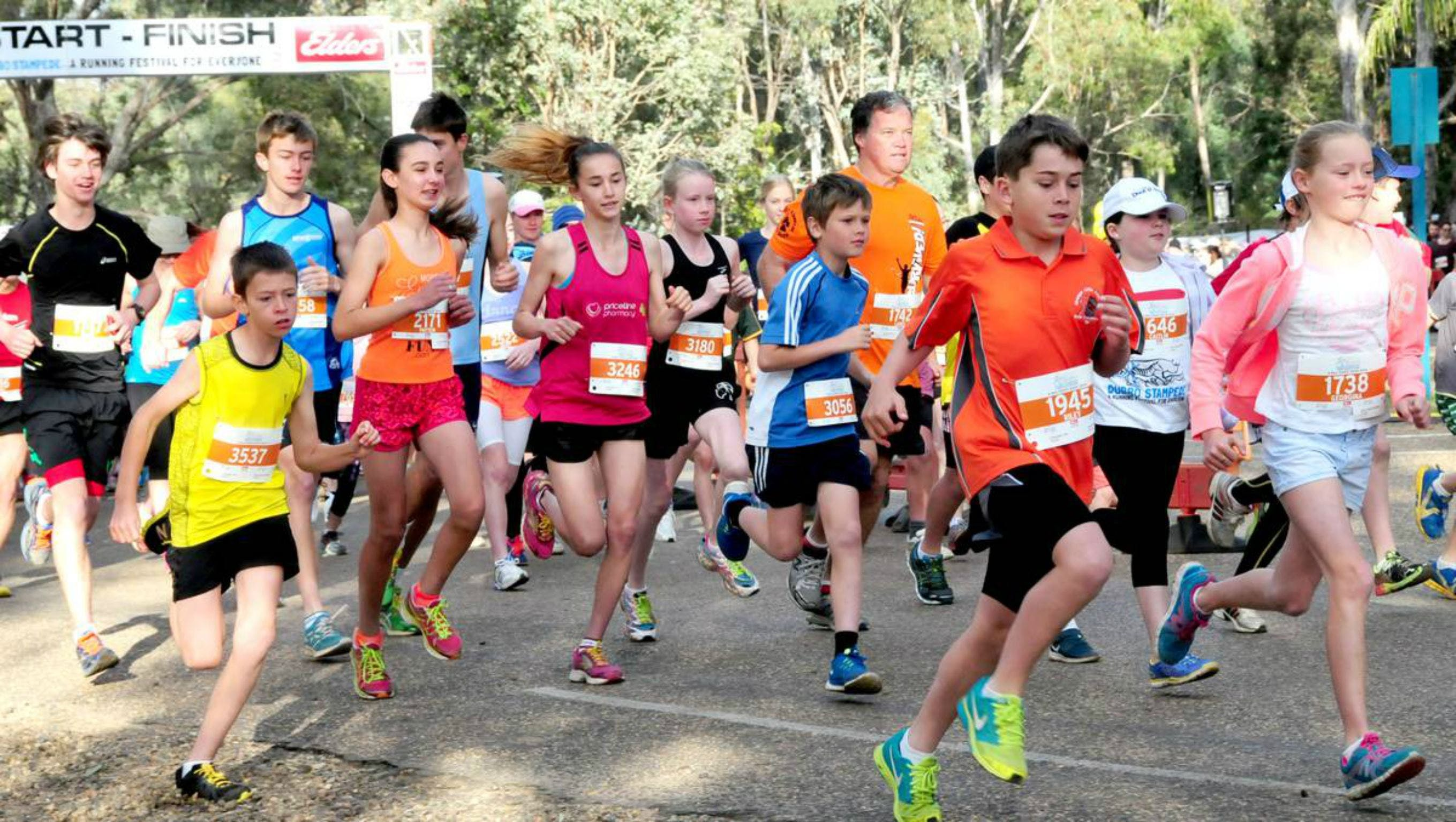MAAS Group Dubbo Stampede Running Festival - VIC Tourism