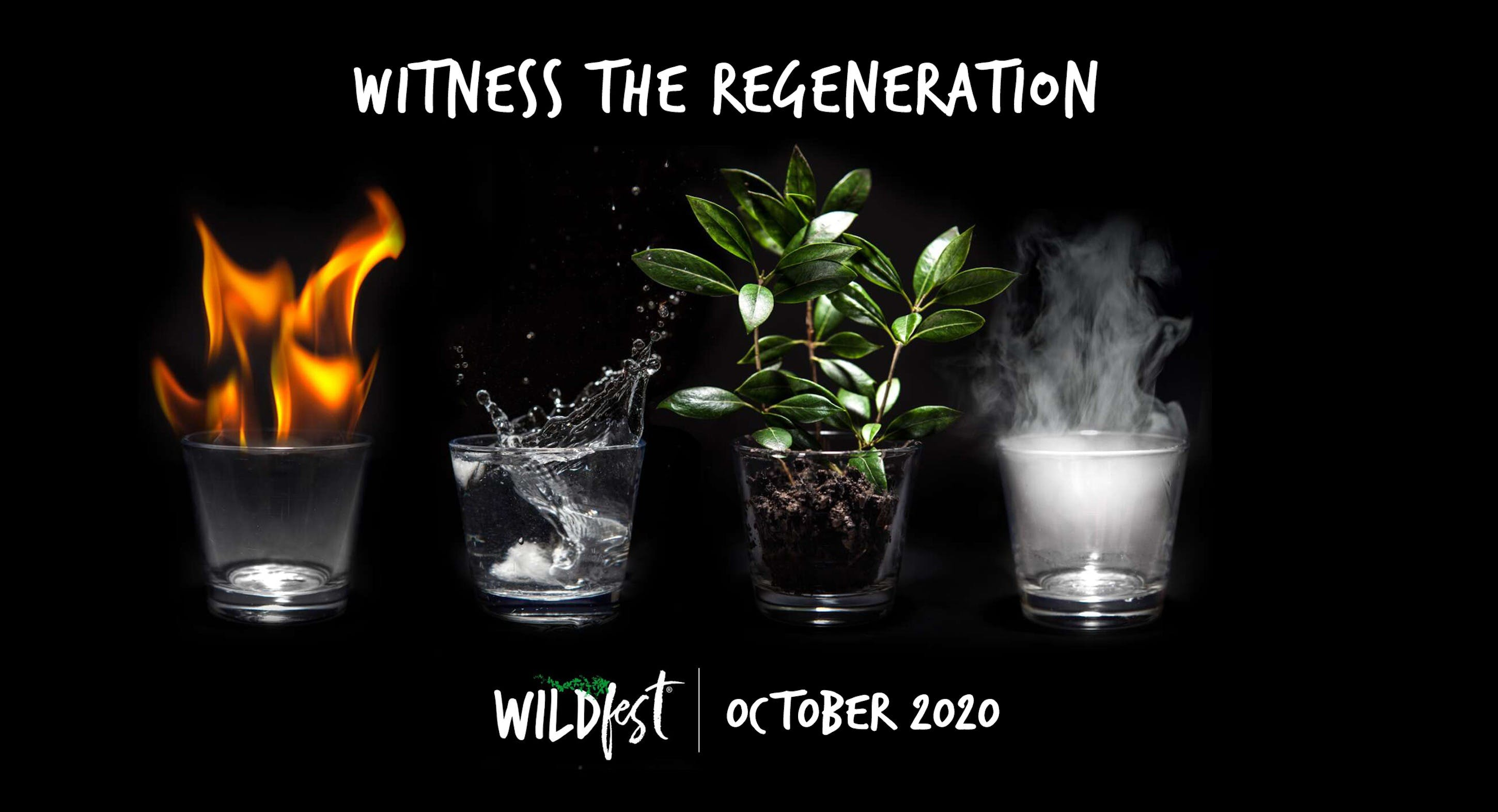 Wildfest - Annual Festival - VIC Tourism