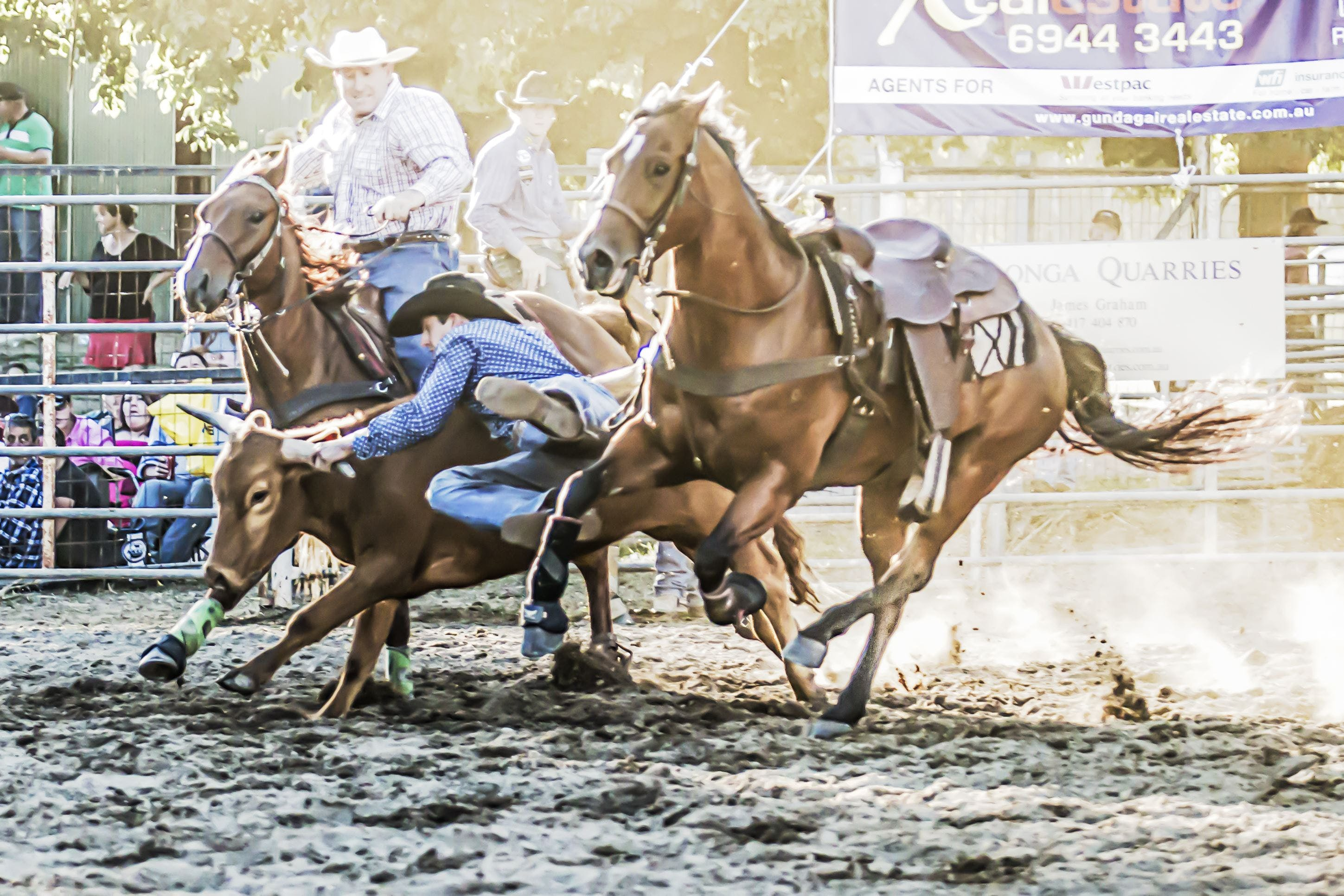 Gundagai Rodeo - VIC Tourism