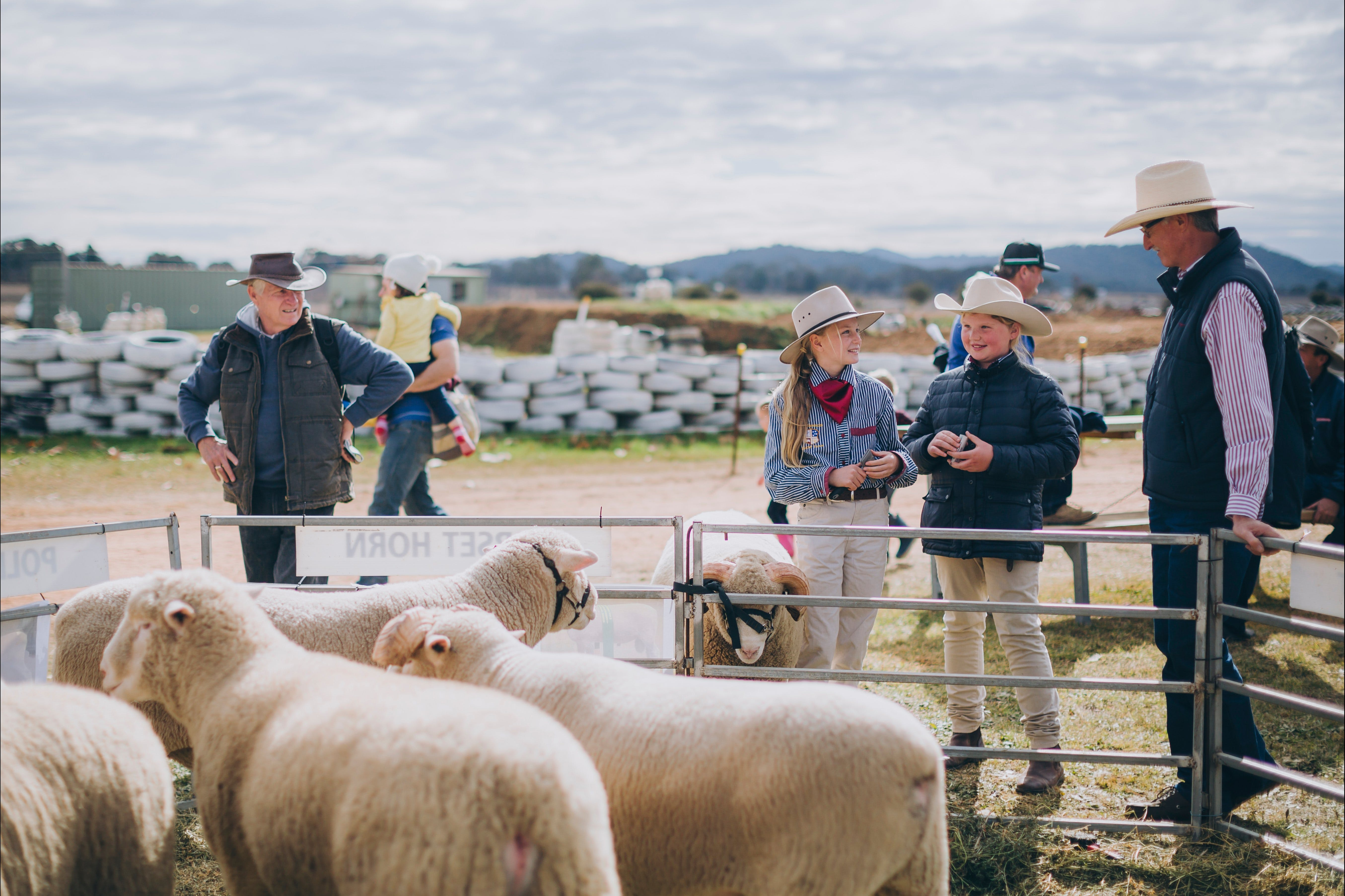 Mudgee Small Farm Field Days - VIC Tourism