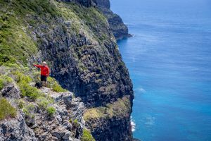 Seven Peaks Walk at Pinetrees Lord Howe Island - VIC Tourism