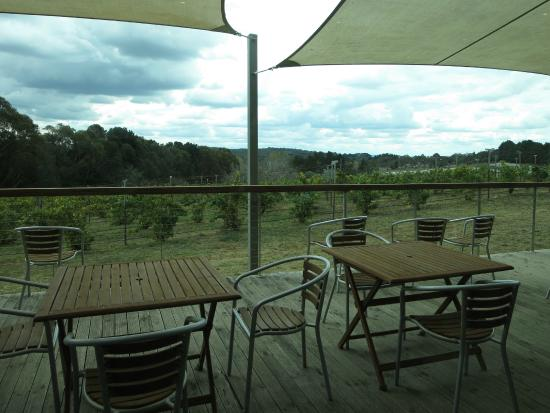 Lark Hill Winery Restaurant - VIC Tourism