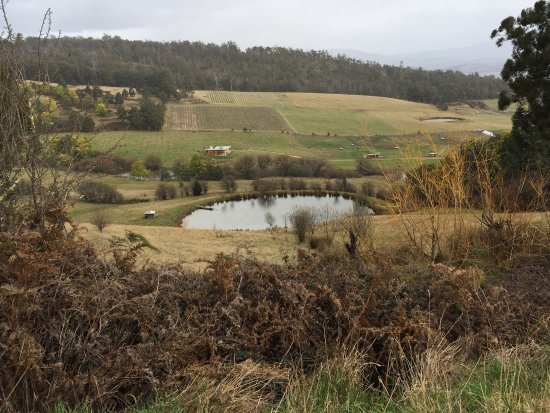 Fat Pig Farm - VIC Tourism