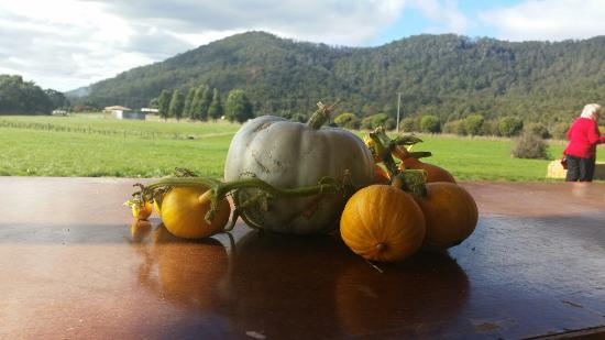 Mount Gnomon Farm - VIC Tourism